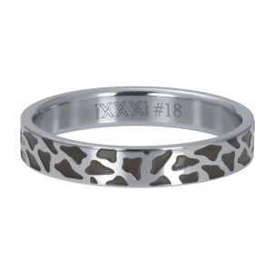 iXXXi Panther R05407-03 Zilver 3 Zilver